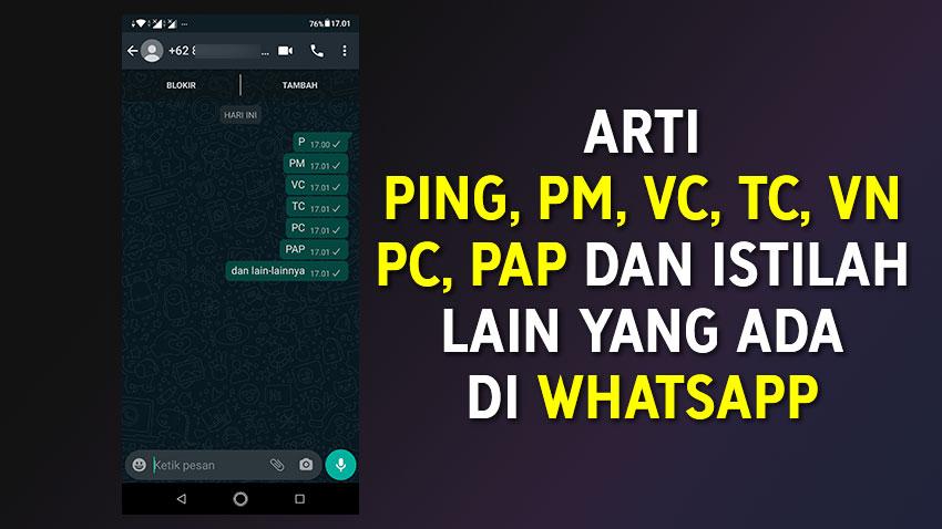 Arti Ping Pm Vc Tc Pc Pap Di Whatsapp Dan 5 Istilah Lainnya Evotekno