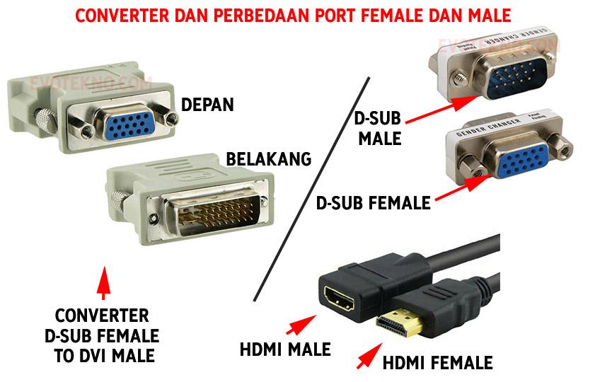 Converter port VGA - Perbedaan port male female