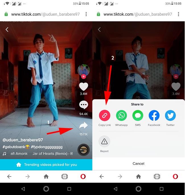 Copy Link Video Tiktok - browser