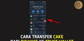 Cara Transfer CAKE dari Binance ke Trust Wallet